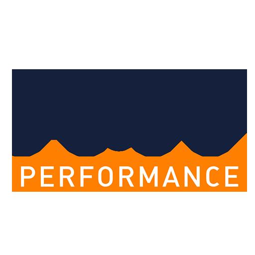 FMT performance - marketing automobile/automotive marketing